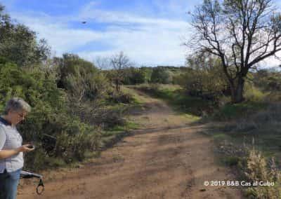 Boa Vista is een GPS wandeling van WandelenAlgarve