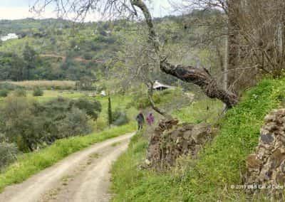 Wandelroute Moinho do Joaquim, wandelpad Oost-Algarve, wandelvakantie
