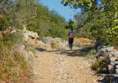 Wandelpad door Barrocal, bomen, struiken, wandelaar