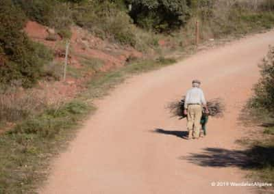 Percurso Pedestre LLE18 Algarve -  Rocha da Pena - Brandhout in kruiwagen