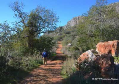 Wandelpad, wandelroute, wandelaar, PR LLE18, Salir