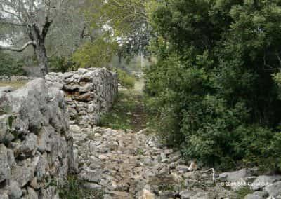 Romeinse paden in wandelroute Amendoeira