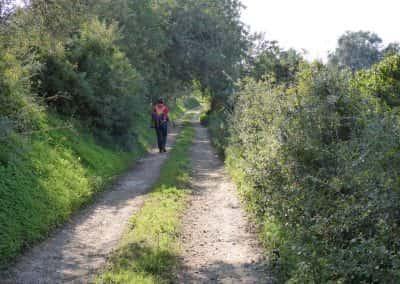Wandelaar op onverhard pad, omzoomd door bomen in de Oost-Algarve