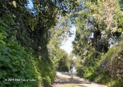 Wandelaar op oude Romeinse weg bij Cerro de Cabeça