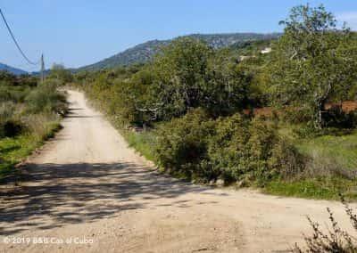 Onverhard wandelpad Cerro de Cabeça