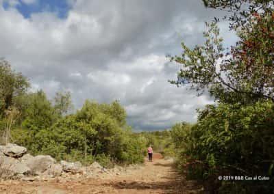 Wandelpad, Cerro do Leiria, Oost-Algarve, Wolkenlucht