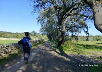 wandelroute Santa Catarina da Fonte do Bispo, GPS route
