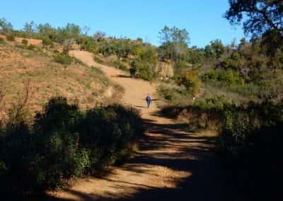 Typische begroeiing Serra do Caldeirão langs wandelpad