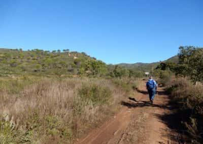 smal pad door groene heuvels met wandelaar
