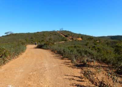 Wandelen São Brás de Alportel Algarve