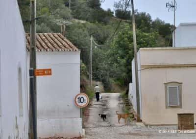 Pad de heuvels in achter Santa Catarina da Fonte do Bispo