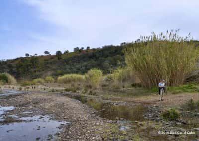 Ribeira do Alportel op wandelroute Alquevinhos