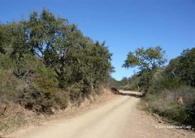 Wandelpad door de ruige natuur van de Algarviaanse heuvels