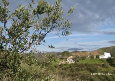 Wandeling Bemparece vallei Varzeas