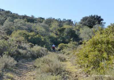 Wandelaar, overgroeid wandelpad, GPS