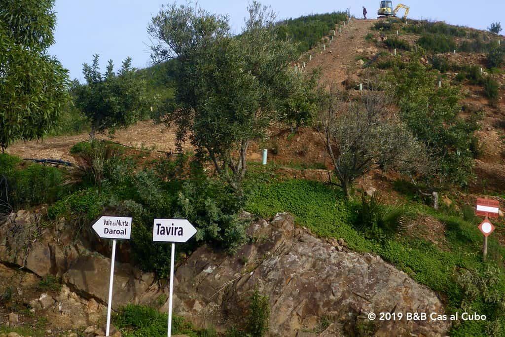 Richtingaanwijzers op het wandelpad in een verlaten gebied