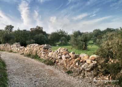 São Brás de Alportel wandelroute - SBA PR1 - Romeinse paden