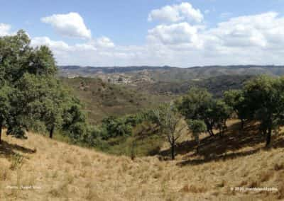 Wandelroute Azinhal dos Mouros LLE PR9 - heuvellandschap