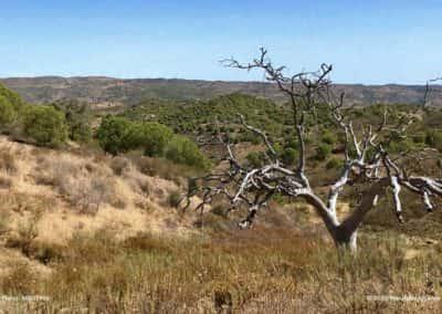 Het uitzicht vanaf Cerro das Barradas op CTM PR5