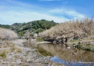 Rietvelden aan de oevers van de rivier de Beliche op wandelroute CTM PR8