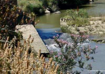 Het pittoreske landschap in het stroomgebied van de Ribeira de Odeleite op CTM PR4