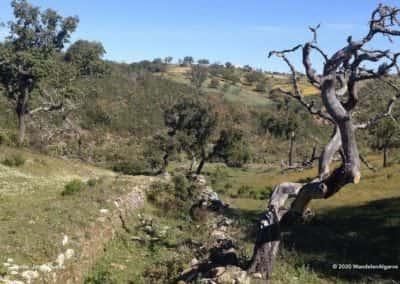 Schilderachtig landschap in de heuvels rondom Corte de Ouro op wandelroute LLE PR2