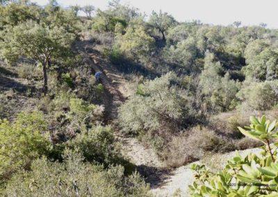 Begroeide hellingen met een slecht pad op wandelroute Fonte Férrea