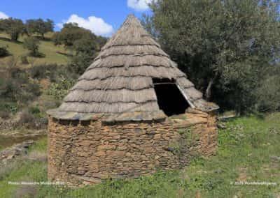 Palheirinho in de buurt van Mealhas op wandeling Tavira PR8 - Masmorra