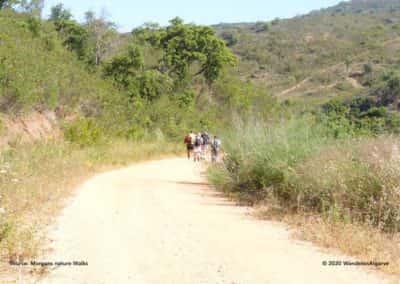 Wandeling gemeente Loulé PR06 in de Serra do Caldeirão
