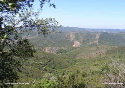Panoramisch uitzicht over de heuvels op wandeling LLE PR21 Pe do Coelho
