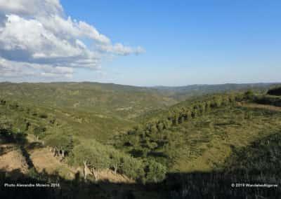 Glooiende heuvels bij Feiteira op wandelroute TAV PR4