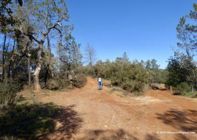 Heuvellandschap rondom Tôr op wandeling Loulé PR14