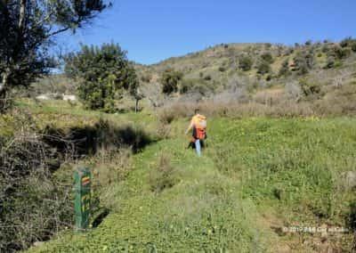 Wandelen langs een smal spoor bij Curral da Pedra