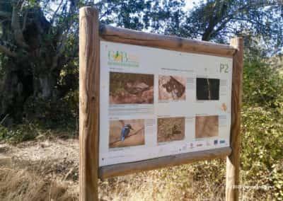 Informatiebord biodiversiteit langs de wandeling door de vallei van de rivier Alportel