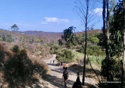 Het wandelpad slingert zich door de heuvels bij Alportel