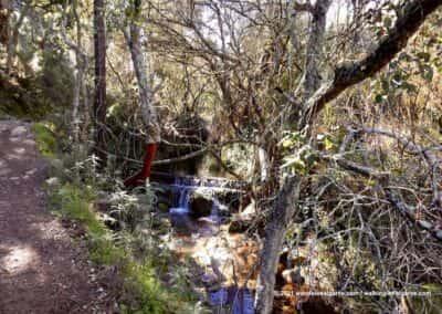 São Brás de Alportel wandelroutes - Vale de Alportel