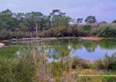 Ria Formosa Olhao