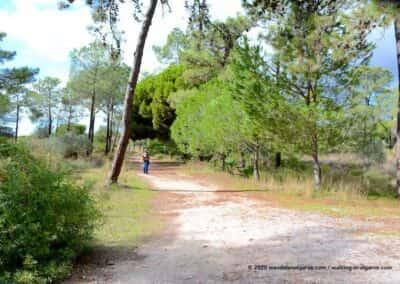 Natuurpark Ria Formosa Olhão