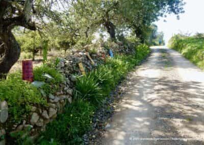 Wandelingen gemeente Tavira Algarve Portugal
