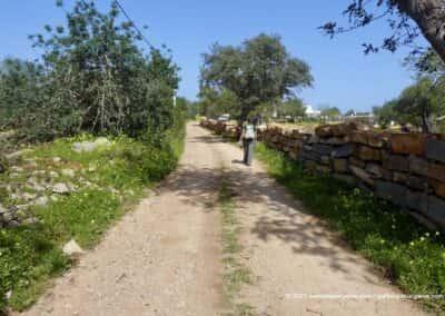 Wandelingen Tavira Barrocal